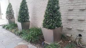 Stainless-steel-planters-on-St.-Charles-Av.-New-Orleans
